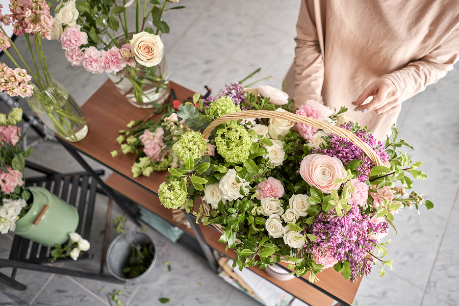Why Are Orchids A Great Gifting Option For Loved Ones?